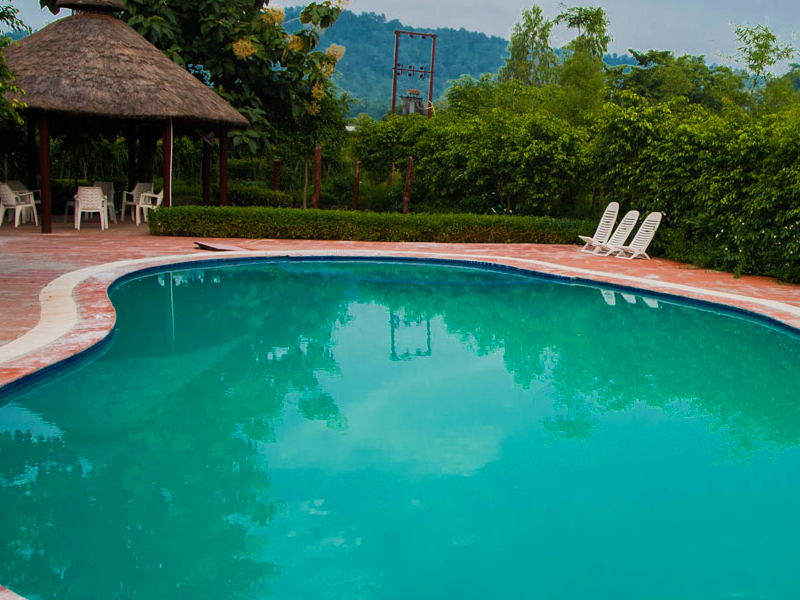 Delhi Corbett Nainital 2 Nigh Package Of Jim Corbett National Park