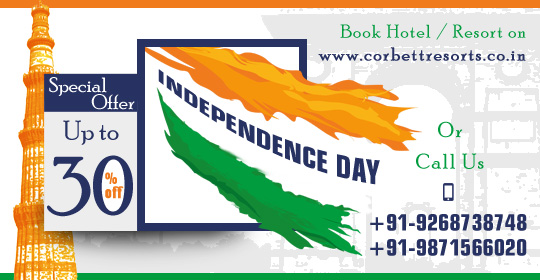 Independence Day special offer
