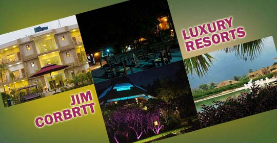 Luxury Resorts in Jim Corbett, Luxury Hotels in Jim Corbett