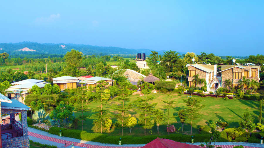 the roar resort in corbett