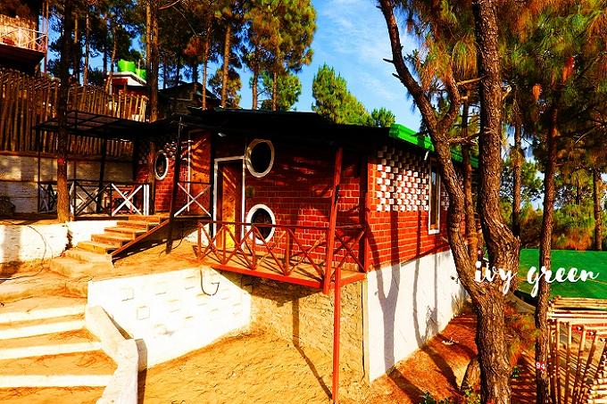IVY Green Resort