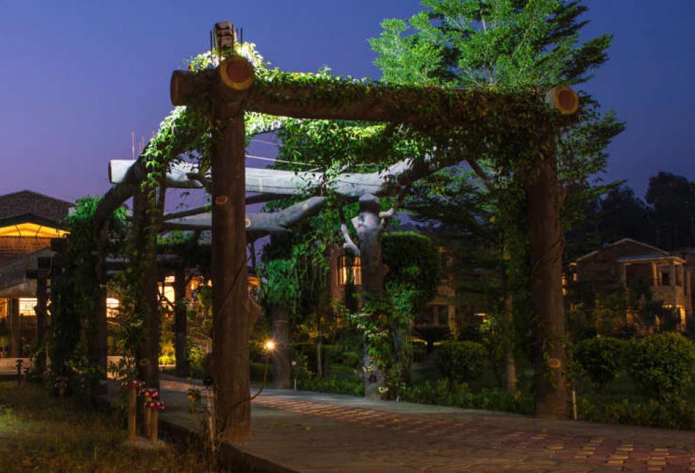 New Year Package corbett Roar Resort