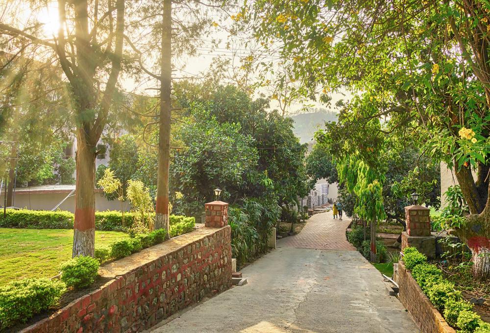 Garden Manu Maharani