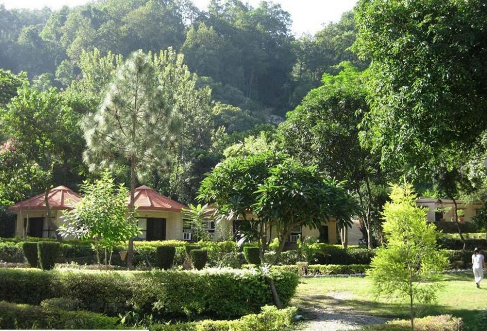 Ramganga resort In Corbett National Park