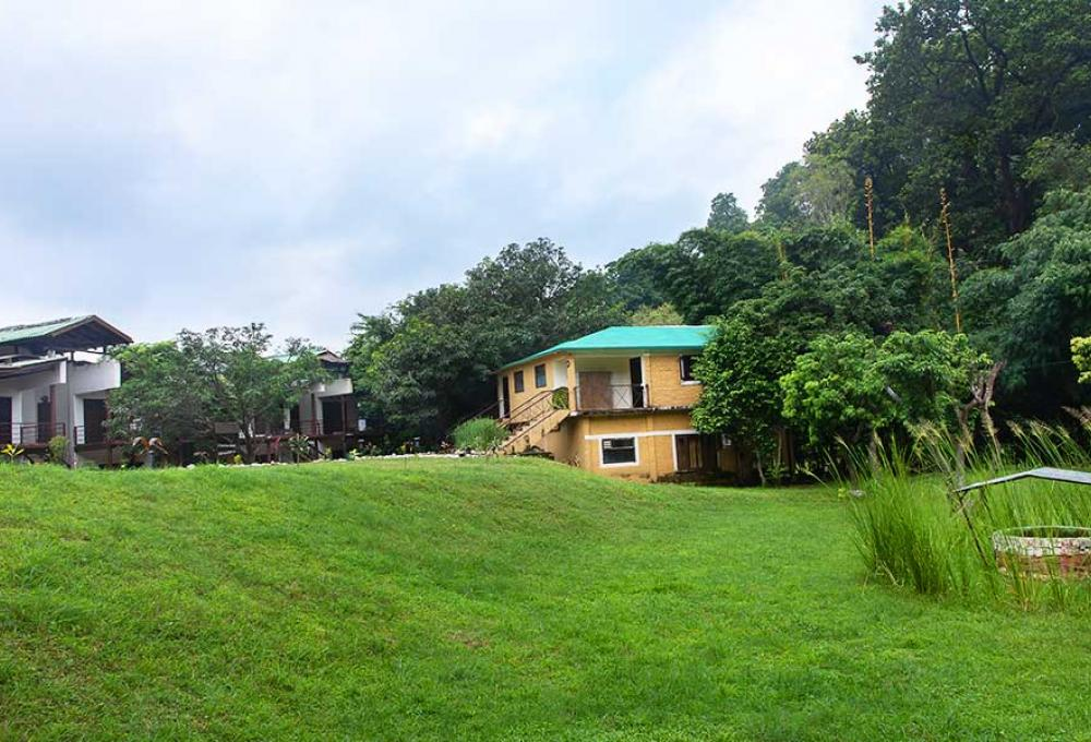 Bagheera Jungle Retreat In Jim Corbett