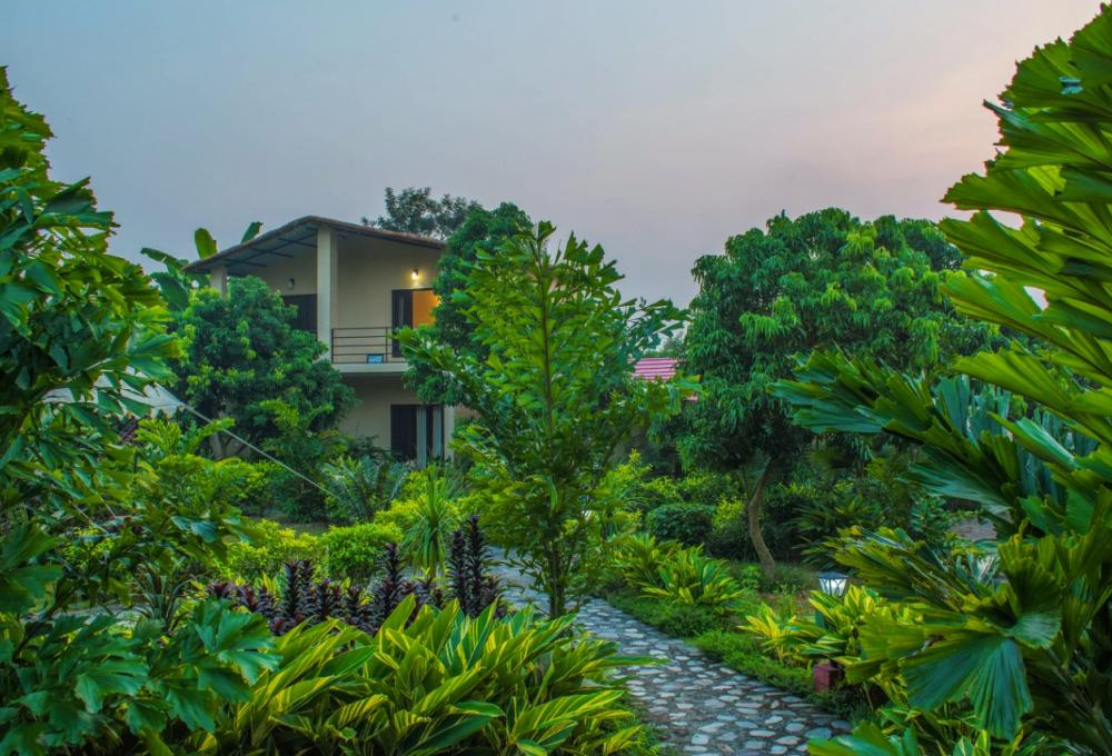 Tigers N Trees Resort Corbett