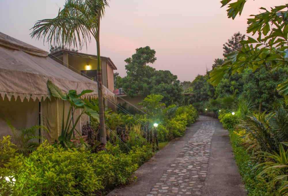 Tigers N Trees Resort in jim Corbett
