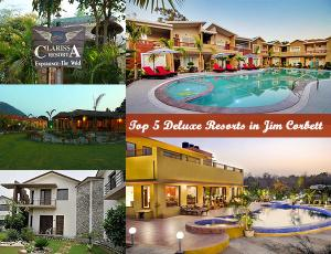 Top 10 Deluxe Resorts in Jim Corbett