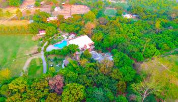 Corbett Wild Resort New Year Package