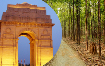 Delhi to Corbett 1 Night Package