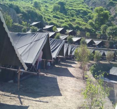 Mogli Camp