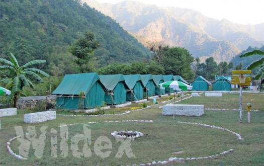 Camp Wildex
