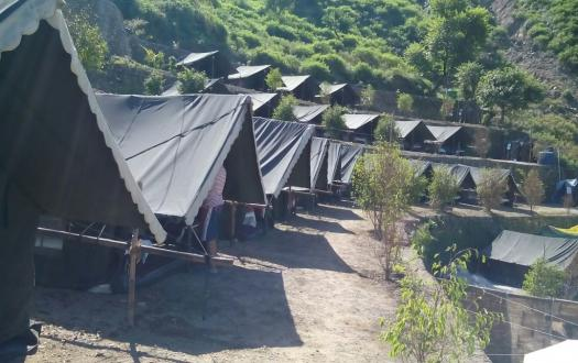 Mogli Camp